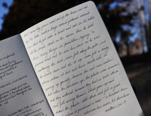 How I Used my Journal to Cut Down on my Screen Time