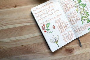 bullet journaling pages