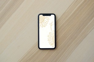 Sunflower Wallpaper Background for iPhones